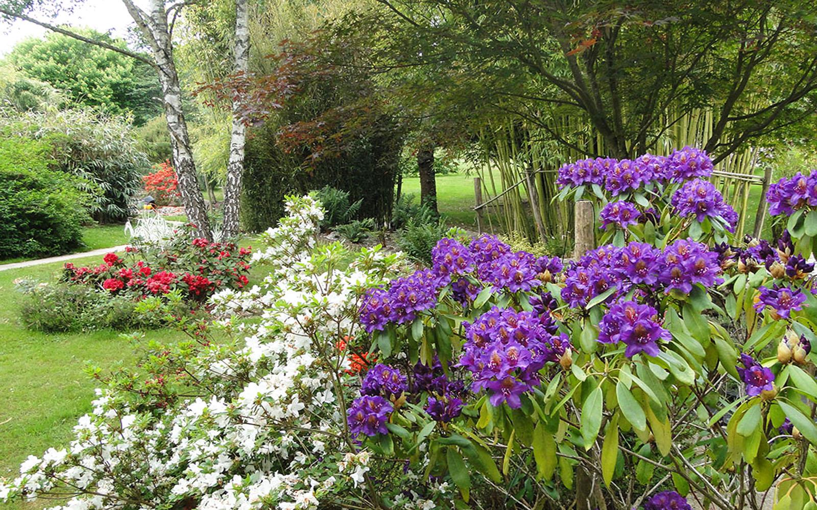 Jardins-Acorus©jardins-acorus
