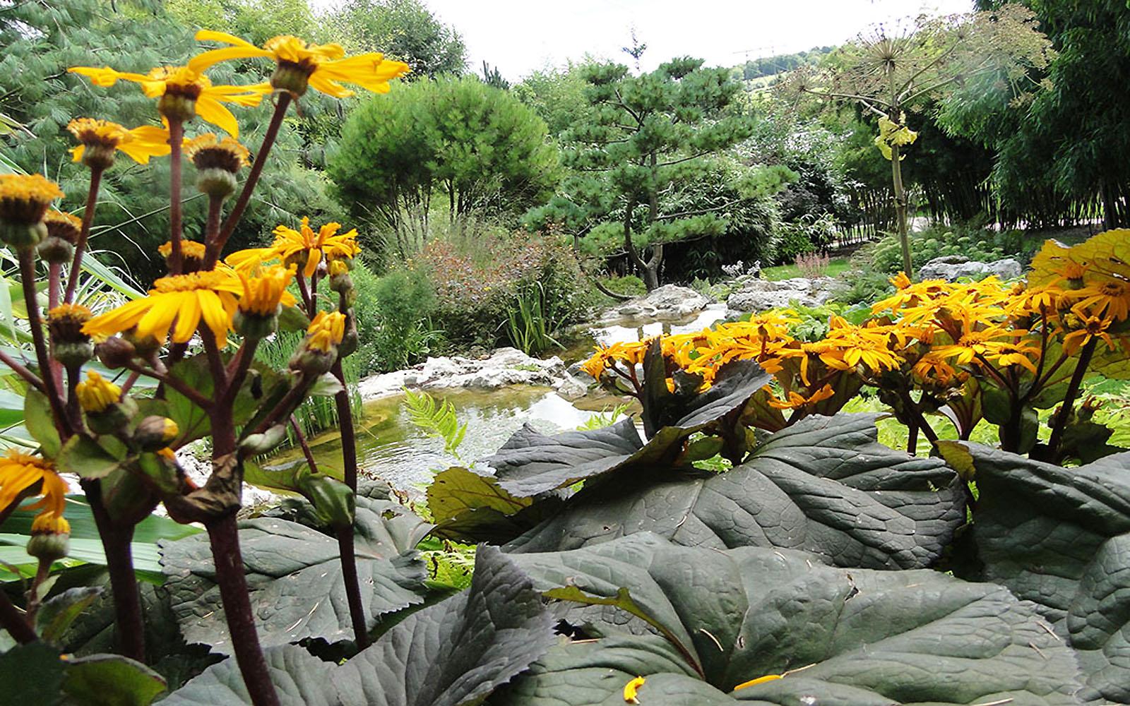 Jardins-Acorus2©jardins-acorus